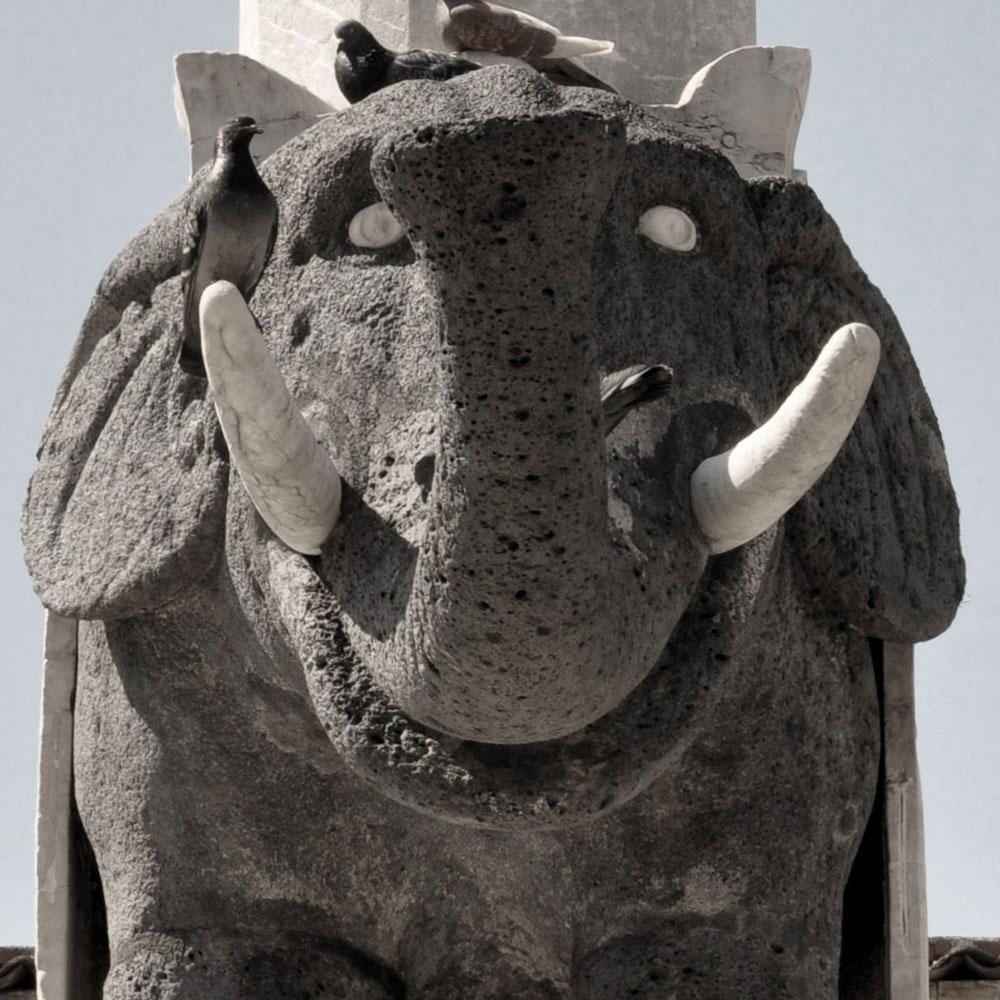 Leggende sull'elefante simbolo di Catania